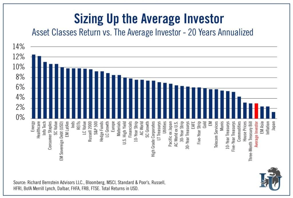 The Average Investor